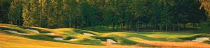 11Viniterra-golf-pano-fall