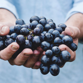 3-hands-holding-grapes