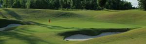 14.golf green